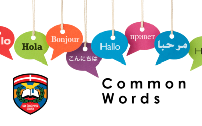 Common Words – All Languages